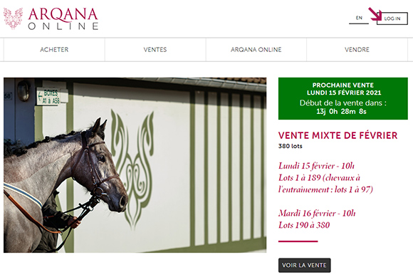Log in Arqana Online